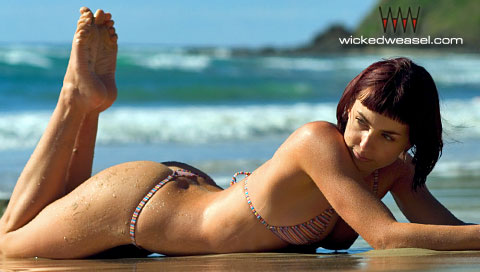 wicked-weasel-01